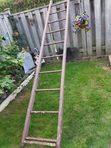 9.5 ft wooden ladder