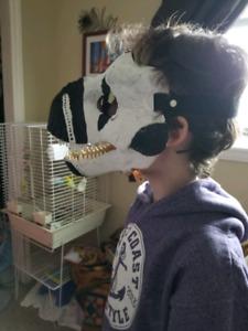 Dinosaur Mask