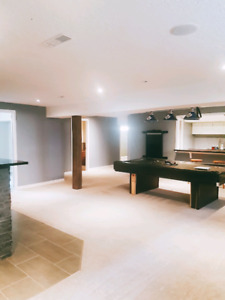 Beautiful Basement available  for rent