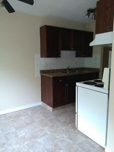 One bedroom apartment for rent in Downtown-Oliver Area
