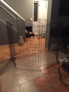 large dog pen for one or multiple pets