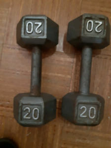 Two 20 pound dumbbells
