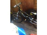 Apollo Ridge FS 272489 Bike