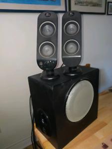 Logitec Speaker system and Microsoft LifeCam