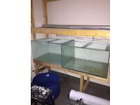 2x 270 litre fish tanks NEED GONE TODAY!!!