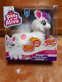 Pets alive llama.