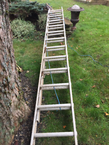 Extension Ladder 12 to 20 ft