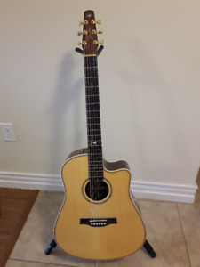 Mint Seagull Artist Acoustic Guitar