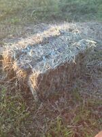 2014 Small Square Bales- Price Reduced