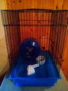 Used hamster or gerbil cage