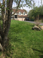 Kawartha lawn and property maintenance (spring clean ups)
