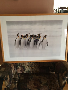 cadre avec des pingouins a vendre