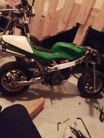 Green 50cc Mini Pocket Bike