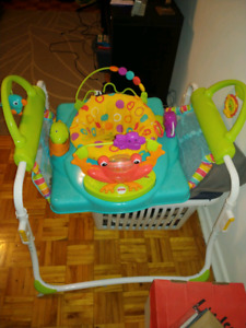 **Fisher Price Jumperoo**