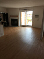 Beautiful 2 Bedroom, Pet Friendly Condo with a Den for Rent