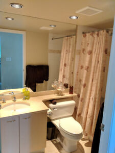 One Bedroom Apartment Close to Coal Harbour
