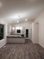 Carpet Lino laminate hardwood planks vinlytiles flooring install