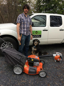 Tonte de pelouse - Lawn Mowing services