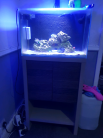 Fluval m60 fish tank and stand