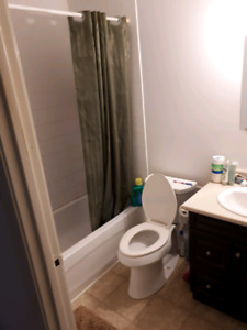1 room for a female in 2 BHK Apt Clayton park from mid Sep