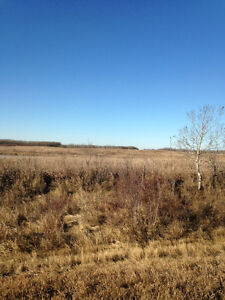 Farmland for Sale by owner - RM of Lipton #217