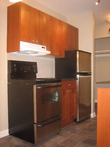Large One Bedroom Downtown Condo Apartment Close to U of W