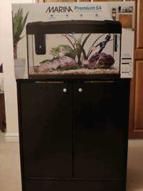Complete Aquarium / Fish Tank set up (BNIB)