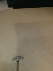 Apartment And Condo Carpet Cleaning Service