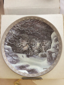 collector plate Snow leopards
