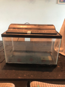 Free 20 Gallon Fish Tank
