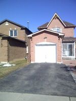 Bachelor Basement apartment in Ajax for Couple or single