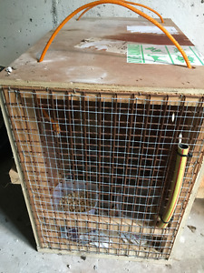 International Travel Airline Approved Cat Carrier