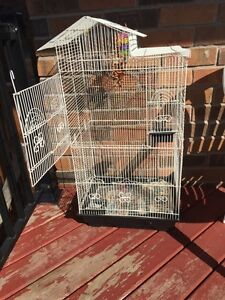 $40 for cage nice big cage. Cambridge Kitchener Area image 1