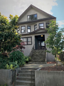 South Cambie 2 Bedroom basement suite - $1750 hydro included