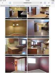 1 BDRM OPEN CONCEPT- Heat & Lights INCLUDED