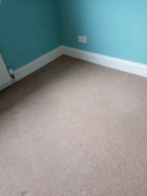 Wool Carpets for sale