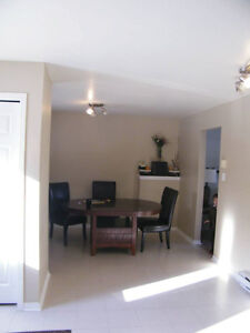 Large, 3 bed, pet-friendly apt in Wolfville available 1st May