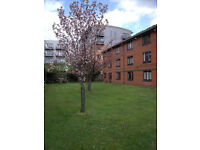 Single Occupancy Room with 4' Double Bed in a Two Bed Flat £475/m Plus Share of Bills E3 2SY