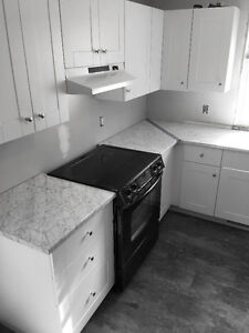 Newly Rennovated 3 Bedroom Home for Rent in Beautiful Rosedale!
