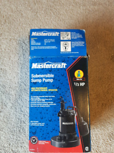 Mastercraft sump pump