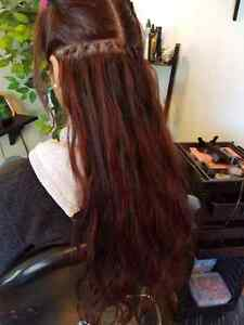 Hair Extentions Highlights & Colours
