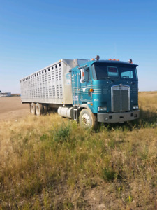 1994 kenworth cabover cattle truck
