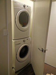 Bachelor/Studio Apartment For rent in Icon Bay Starting Dec 1st