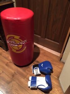 Everlast free standing punch / kicking bag with boxing gloves