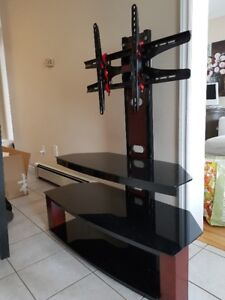 TV Stand and Mount (Z-Line Designs)