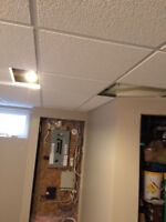 Professionals for Suspended T-Bar Ceiling Drop Tile Installation