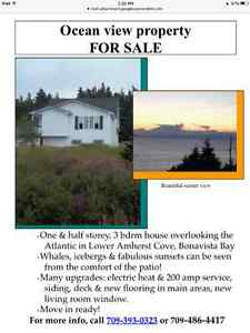 For Sale:    Beautiful Ocean View Property