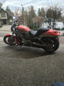 2007 Harley-Davidson® Screamin' Eagle V-Rod, limited edition