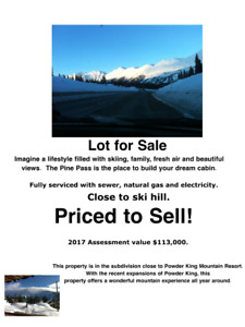 Ski Hill Lot for Sale at Powder King!