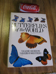 livre butterflies of the world Valerio Sbordoni Times 312 pages